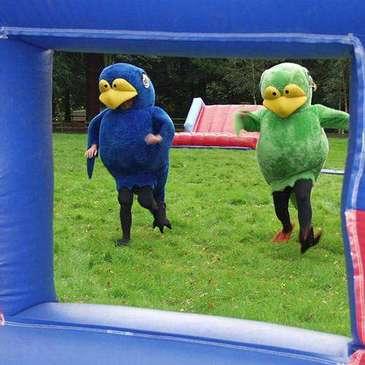 Bird Cage Rage